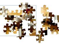 Tier Puzzle
